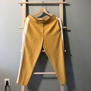 NWT Aritzia Babaton Conan pants size 6